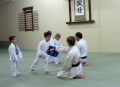 the dojo juniors