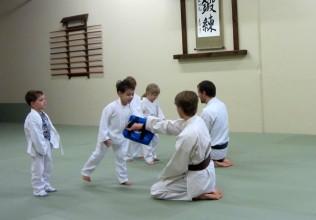 the dojo juniors